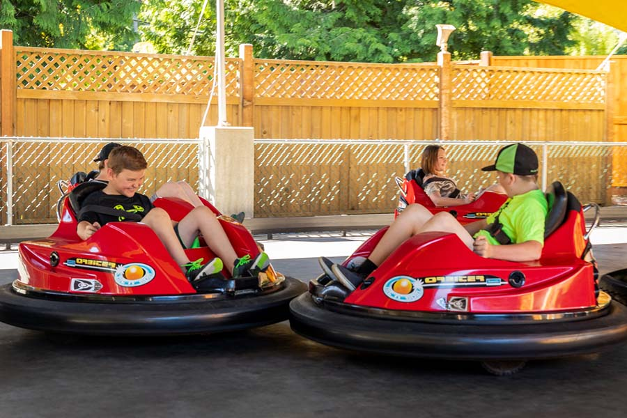 Bumper Cars at Riptide Lagoon